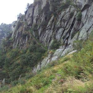 Steig zur Alpe Forna